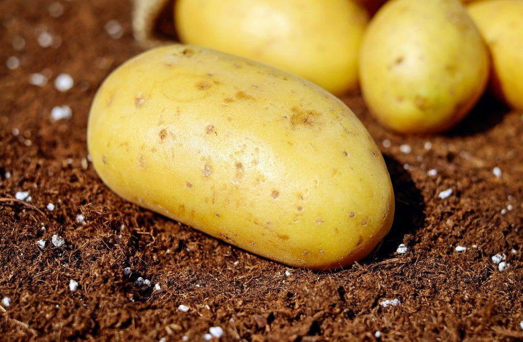 Potato For Skin Whitening