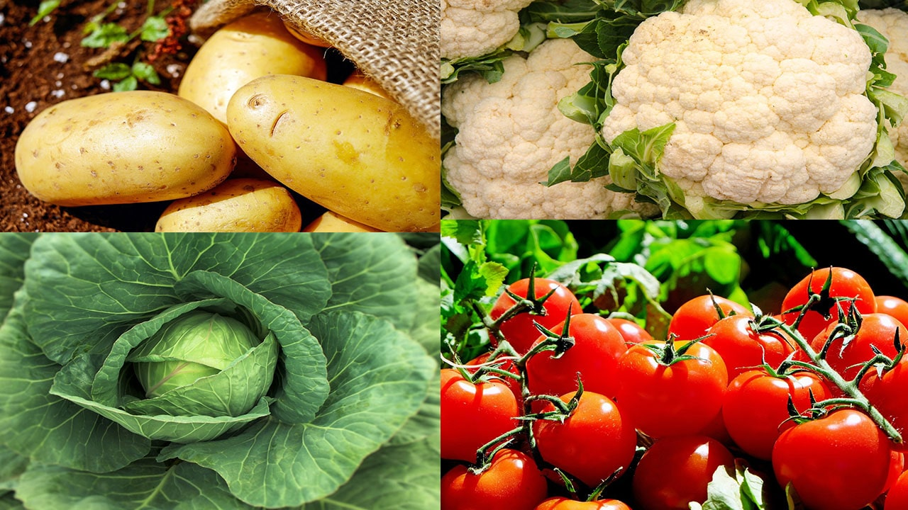 10 Vegetables That Are High in Vitamin C