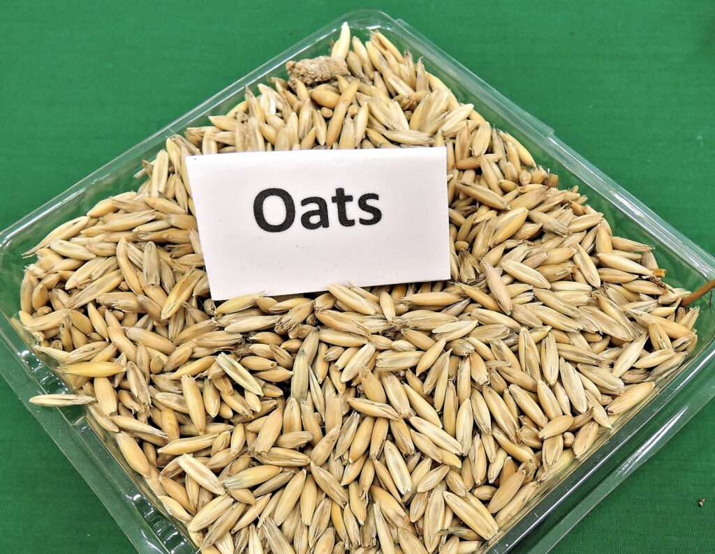 Amazing Benefits of Oats For Face